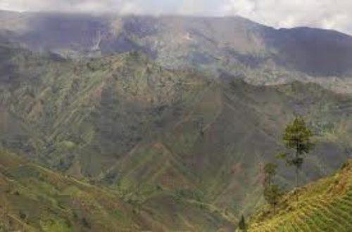 Article : Haïti: Qui voilera le vagin de ton environnement?