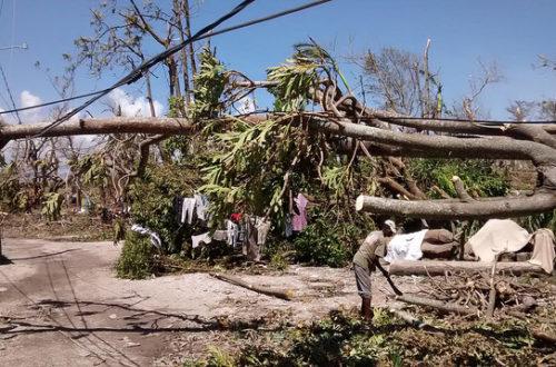 Article : Ouragan Matthew : Haïti est-elle maudite ?