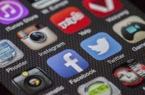 Article : Non, les dindons ne sont pas seulement sur les réseaux sociaux