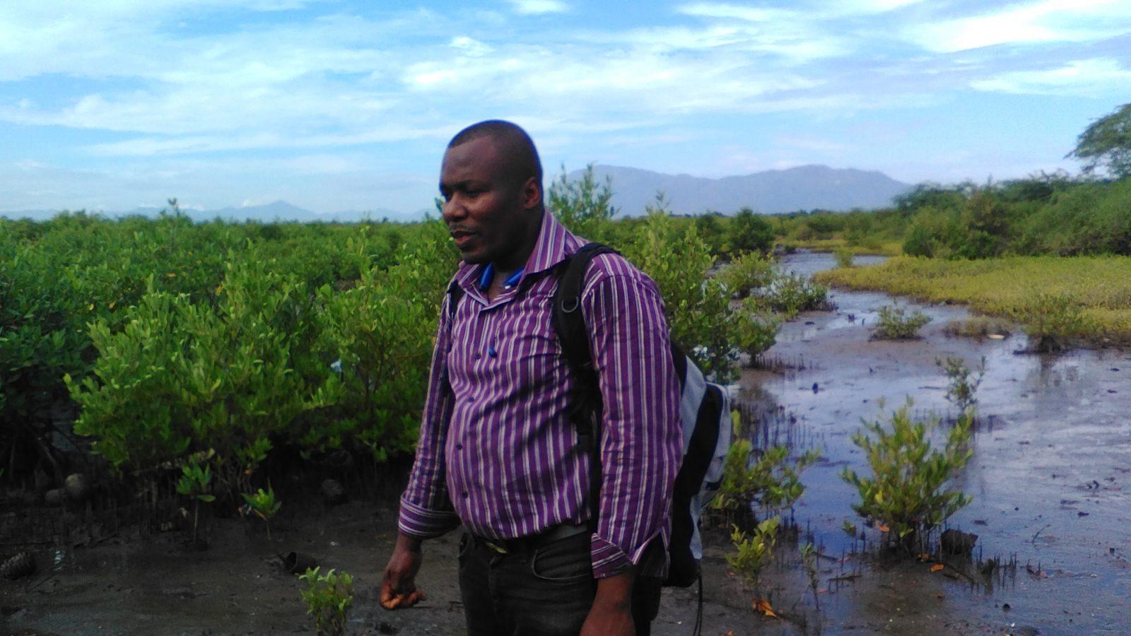Visite des mangroves