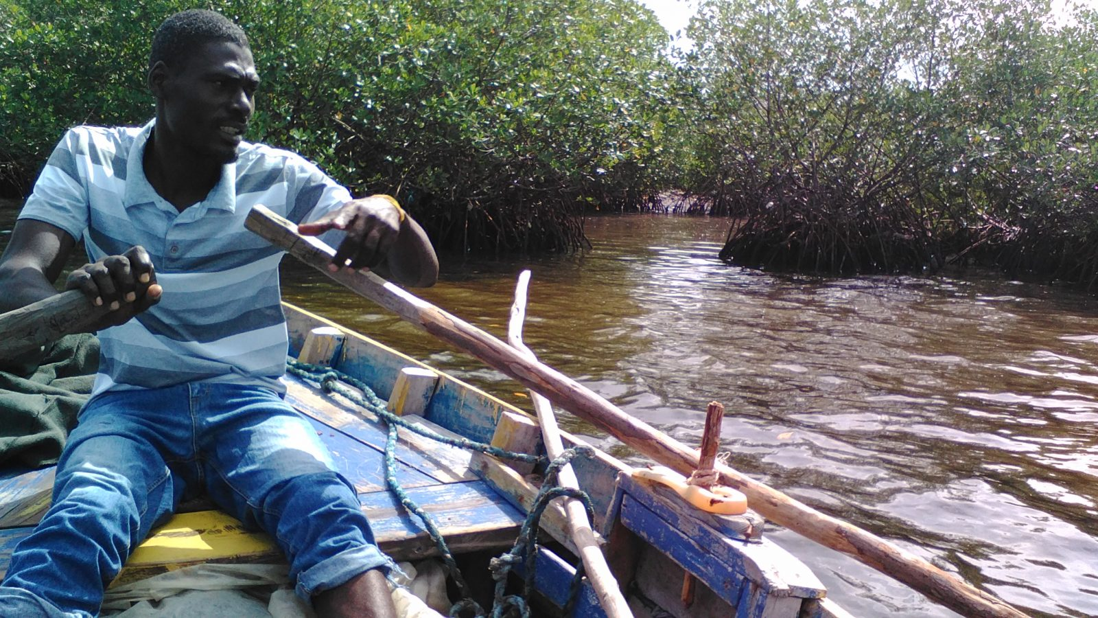 Pêcheur - mangroves